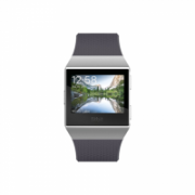 Fitbit Ionic Colour LCD, 320 g, Touchscreen, Bluetooth, Heart rate monitor, Charcoal/Smoke Gray, GPS (satellite)  264,00